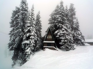 Snowstorm on Grouse mountain | by The Globetrotting photographer