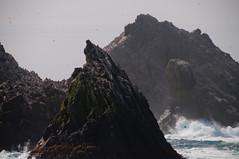 Rought Seas near the shag rocks