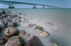 Puente de Zelanda