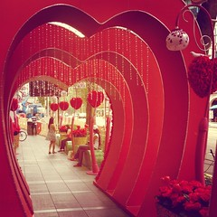 Orchard road love