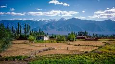 Himalaya, Ladakh, India