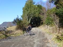 tour en bicicleta en pucon_10_nativotravel.cl