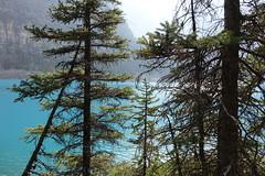 Lago Moraine