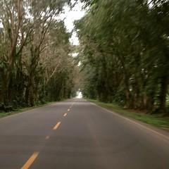 Llegando a #Tumaco