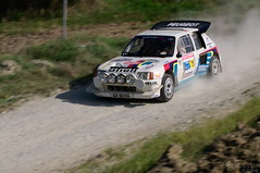 LS15 - Peugeot 205 T16 - 1985