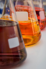 Chemistry, Open Day at Ariel U.
