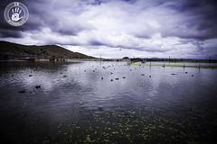 Bahía de Puno