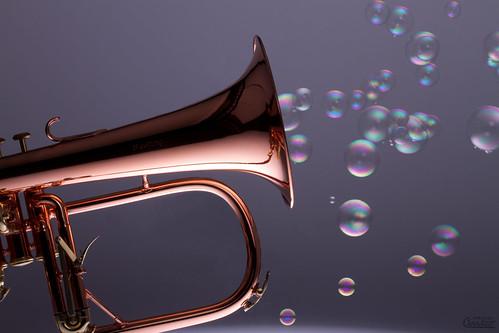 Bugle bulles