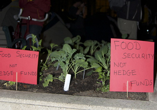 food security not hedge funds | by lilyrothrock