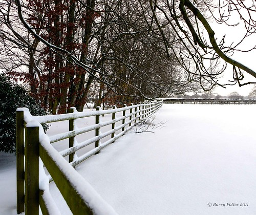 Winter scene | by Barry Potter (EdenMedia)