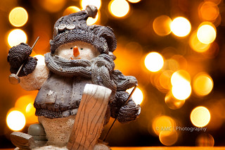 Frosty The Snow Skiing Snowman | by {Andrea}