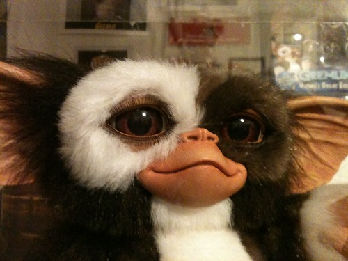 Gremlins Medicom Gizmo Prop Doll 1:1 Replica face detail | by 80'scollector_geekstress