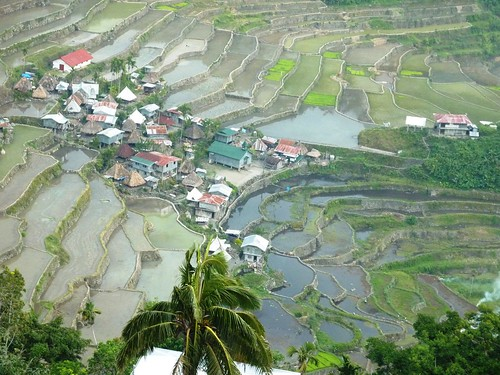 Luzon-Batad (3)