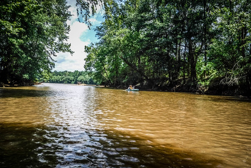 Goat Island in the Broad River-96