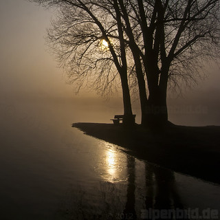 Foggy sunrise and a lonely bench  -  expl..5 | by alpenbild.de