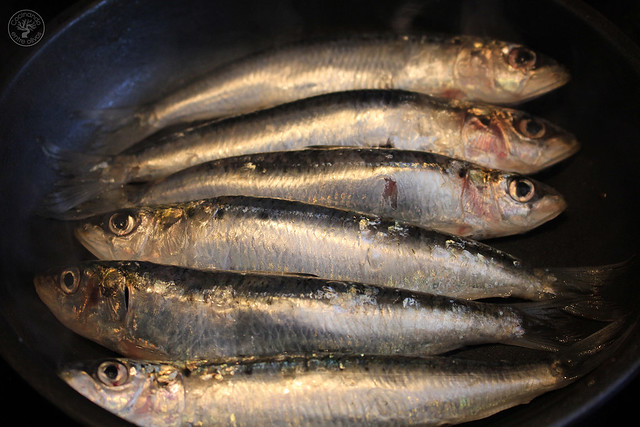 Migas de semola con melon y sardinas (13)