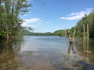 Lake Watuga