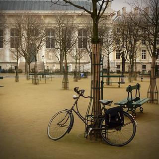PARIS: PLACE DAUPHINE | by Boccacino