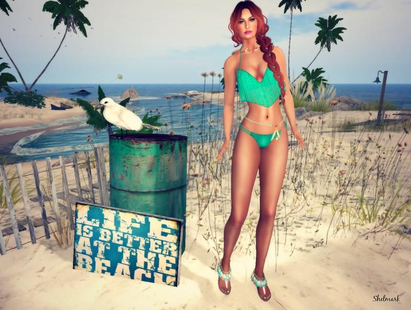 Blog_Flippant_Pensecola_1