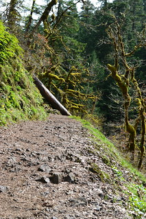 Eagle Creek Trail | by MJessicaKR