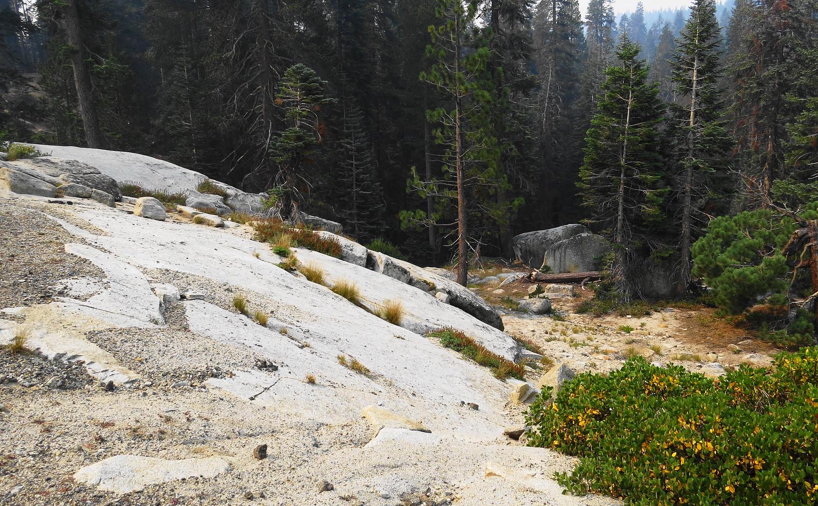 Kings Canyon, CA