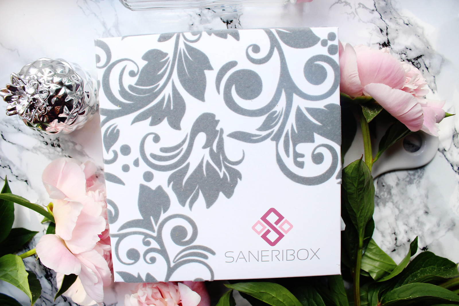 SANERIBOX unboxing