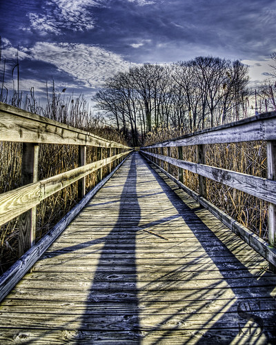 Beaverbrook trail - the long walk- | by Singing With Light