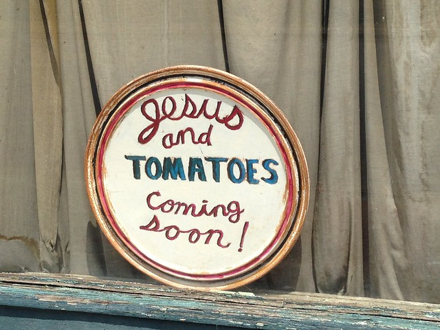 Jesus and Tomatoes Coming Soon!