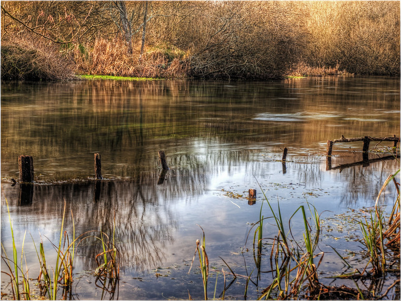 Reflections on the River Itchen, Hampshire