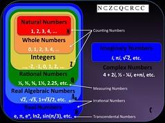 Worksheets Number Sets Worksheets number sets algebra 1 worksheets www tutorcircle comthe flickr by sunil raj2012