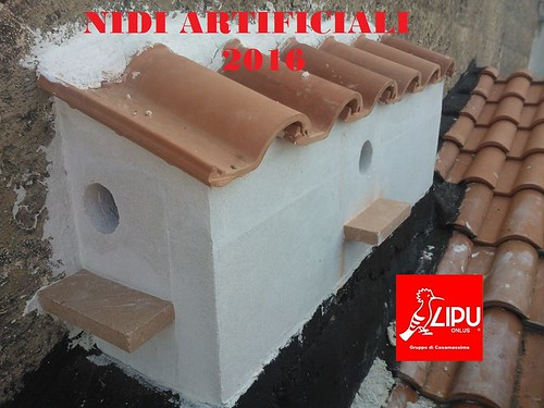 Uno dei nidi artificiali del Falco Grillaio
