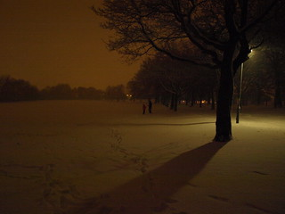 snowy night in selly oak park | by eugenem1