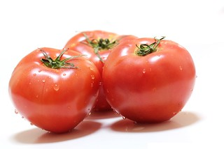 チワワが食べられる野菜 トマト