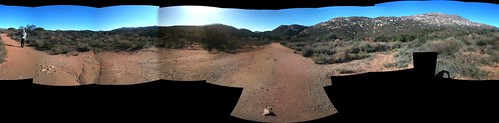 Panoramic Desert. Baja California, Mexico | by yougrowgirl