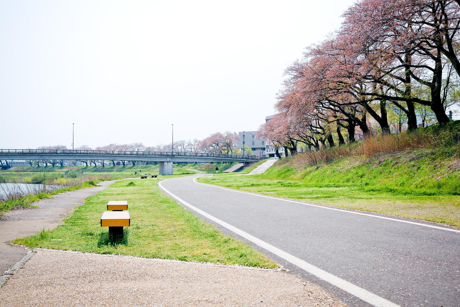 2015 April Kansai 12