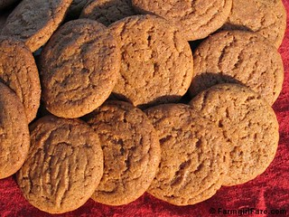 Molasses ginger spice snap cookies 2 | by Farmgirl Susan