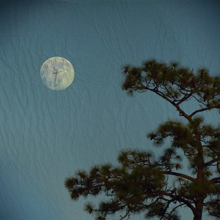 the moon was a clock behind swaying trees ... [Explore for Dec 13, #136, dropped] | by Photomaginarium