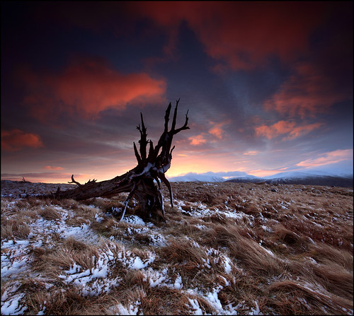 East Mealour Dawn | by angus clyne