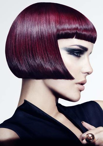 E_SALON_TEAM_OF_THE_YEAR_2012_1sml | by Hair Expo