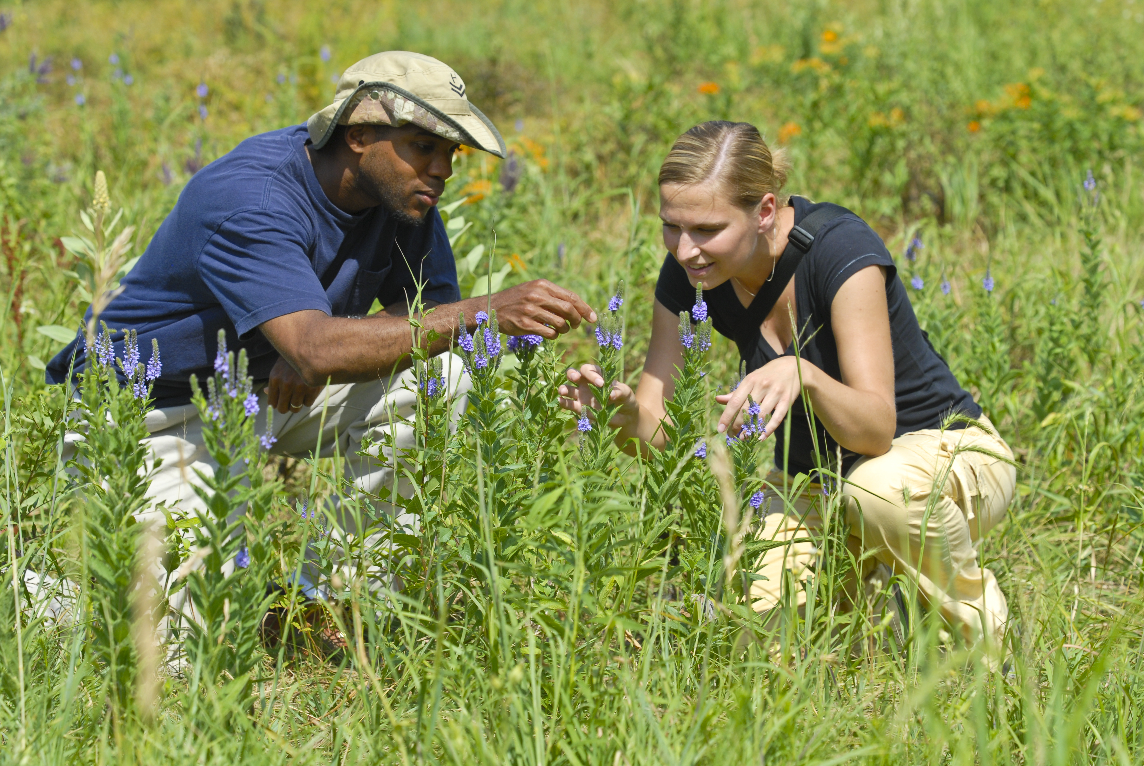 Master of Arts in Education: Natural Science and Environmental Education