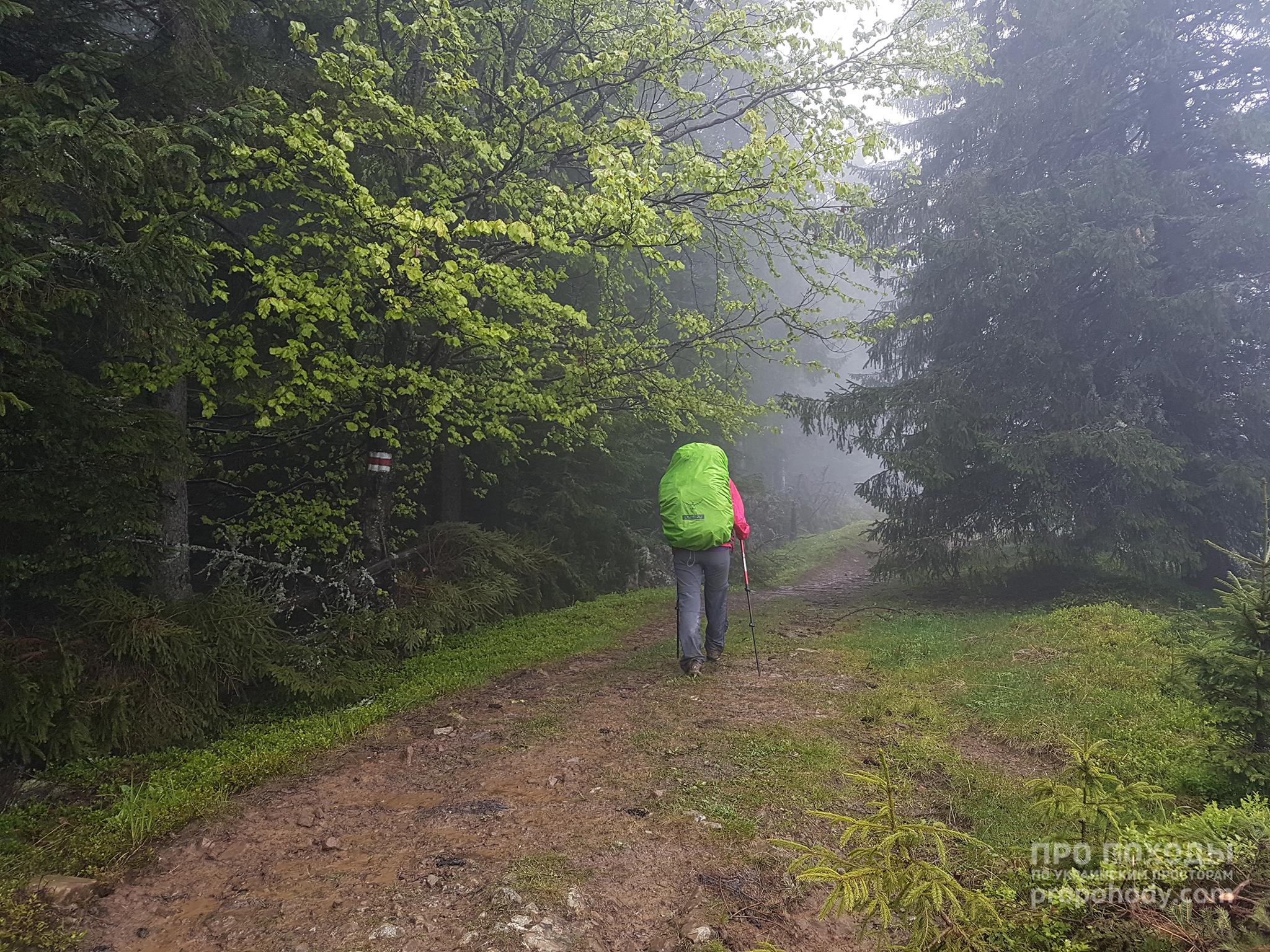 Гринявські гори. Йдемо в дощ