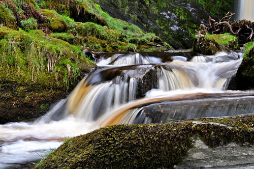 Pistyll Falls, Wales  Explored highest position #22 | by Lamby1959