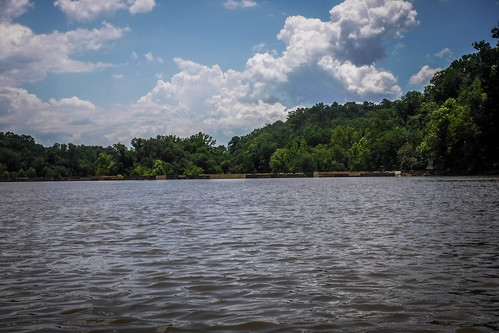 Goat Island in the Broad River-124