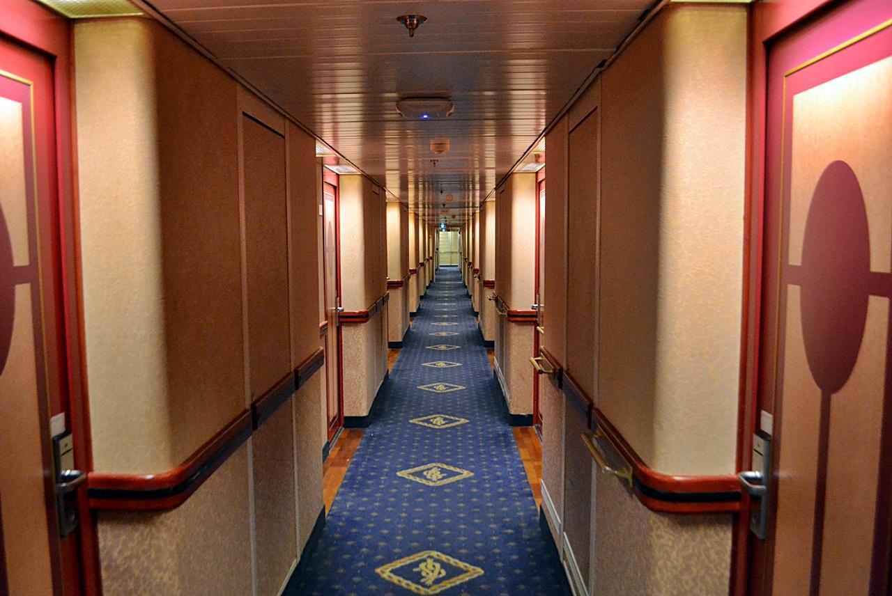 cruise14