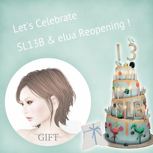 SL13B Gift & elua Group Gift HUNT
