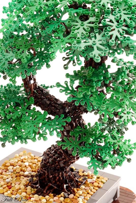 Bonsai (2 of 3)