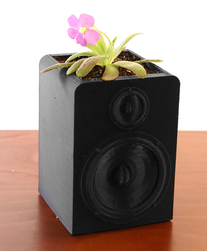 Pinguicula Speaker | by videopixil