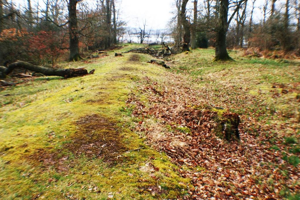 Roman Camp boundary at Dunning, Scotland