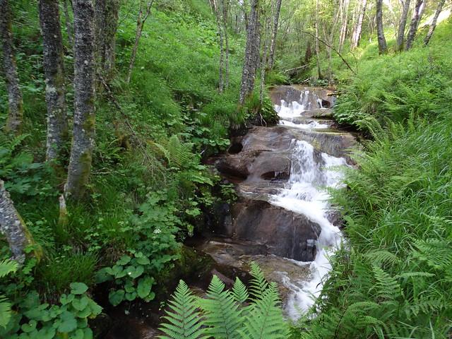 Río Forgas en O Courel