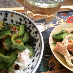 spicy pork goya donburi, roast chicken cucumber salad & coldbrew oolong❤︎ #dinner #japan #oolong #coldbrew #roastchicken #goya #spicypork #donburi #水出し #ゴーヤー #烏龍茶 #丼